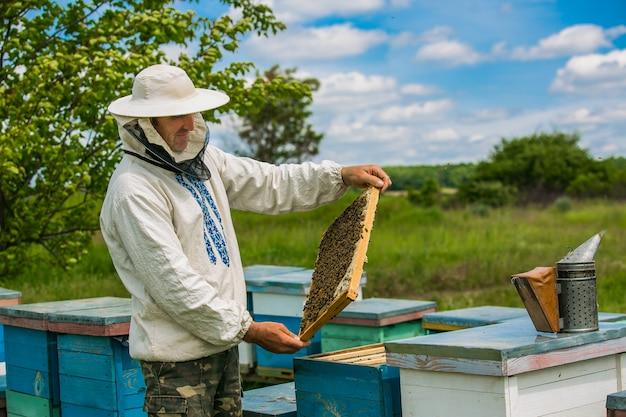 Pszczelarz pracuje z pszczołami i ulami na pasiece.