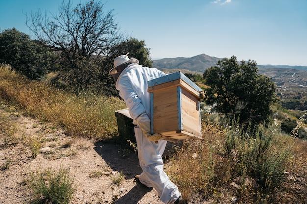 Pszczelarz trzymający na plecach ul pszczół, aby zbierać miód