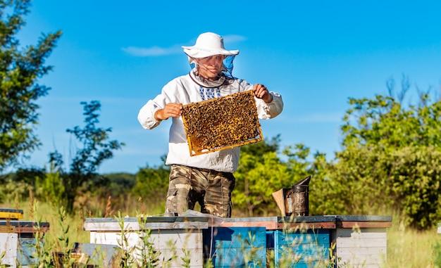 Pszczelarz w ochronnej odzieży roboczej sprawdzającej ramkę o strukturze plastra miodu pełną pszczół w pobliżu drewnianych uli w słoneczny dzień.