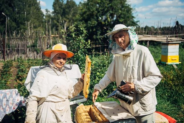 Pszczelarze w pobliżu ula, aby zapewnić zdrowie kolonii pszczół lub zbiorów miodu. pszczelarze w ochronnej odzieży roboczej sprawdzającej ramkę o strukturze plastra miodu w pasiece. dwóch starszych rolników zbiera ekologiczny miód.