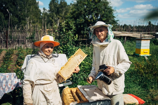 Pszczelarze w pobliżu ula, aby zapewnić zdrowie kolonii pszczół