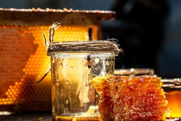 Pszczoła latająca na tle plastrów miodu z pełnymi komórkami miodu