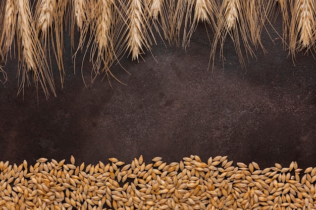 Pszeniczna trawa i ziarna na textured tle