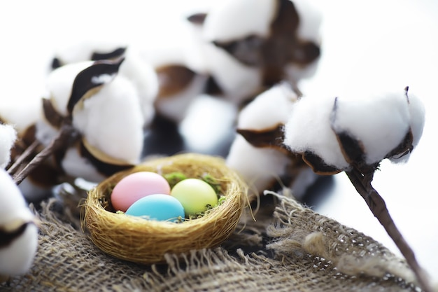 Ptasie gniazdo z jajami. gałązki wierzby i pierwsze zielenie. tło wielkanoc. niedziela palmowa. święto chrześcijańskie. tło wiosna.