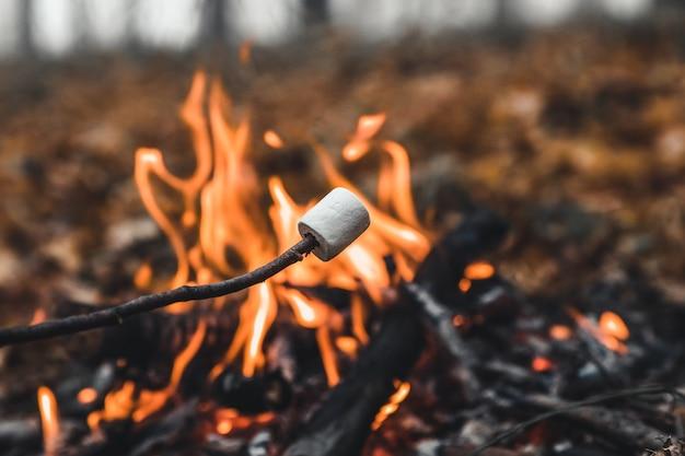 Ptasie mleczko na szaszłykach smaży się na stosie. tosty z pianki marshmallows z otwartym ogniem na szpikulcu