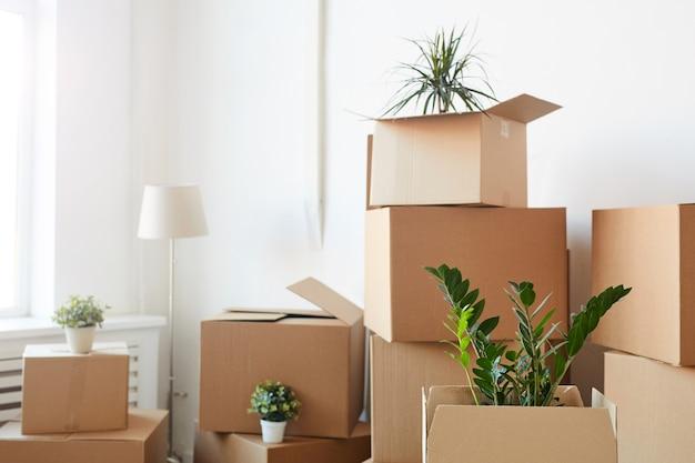 Pudełka kartonowe ułożone w pustym białym pokoju z roślinami i rzeczami osobistymi w środku, koncepcja przeprowadzki lub relokacji