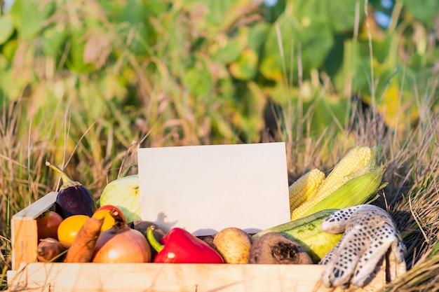 Pudełko pełne naturalnych organicznych warzyw. pusty znak na stosie świeżych warzyw w dziedzinie rolnictwa.
