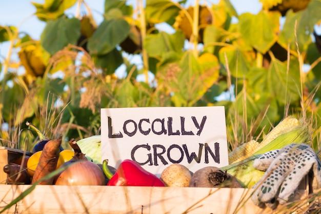 """Pudełko pełne naturalnych organicznych warzyw. znak """"lokalnie uprawiany"""" na kupie świeżych warzyw na polu."""