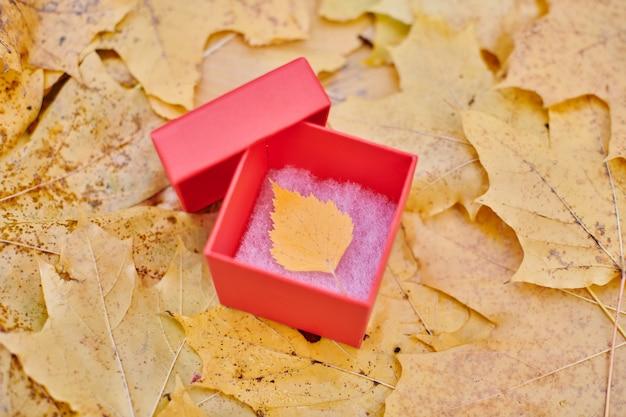 Pudełko z jesiennym liściem