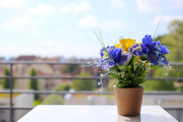 Purpurowe irysy w doniczce stoją na białym stole w pobliżu okna