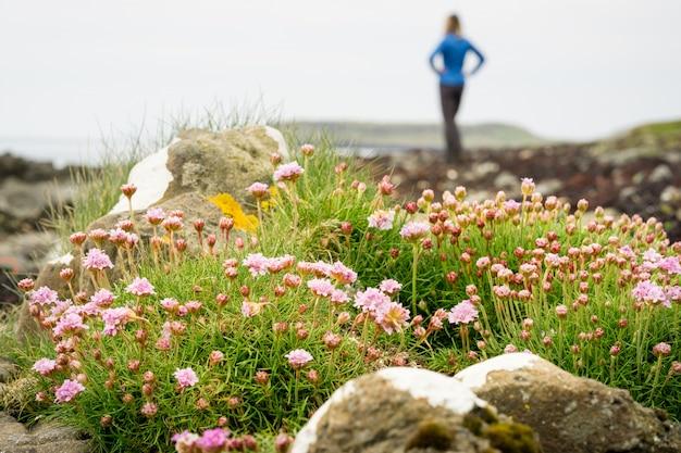 Purpurowe kwiaty na plaży z kobietą