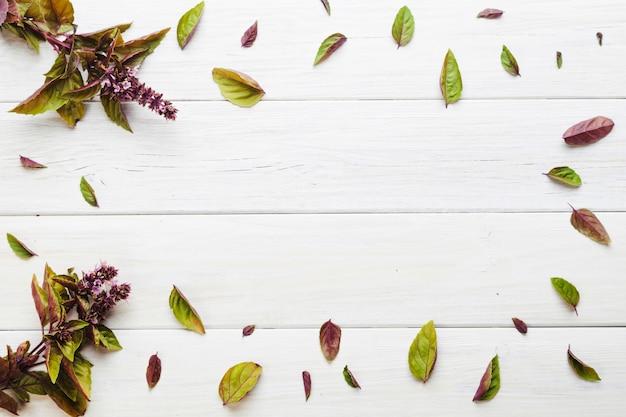 Purpurowe kwitnące rośliny i liście