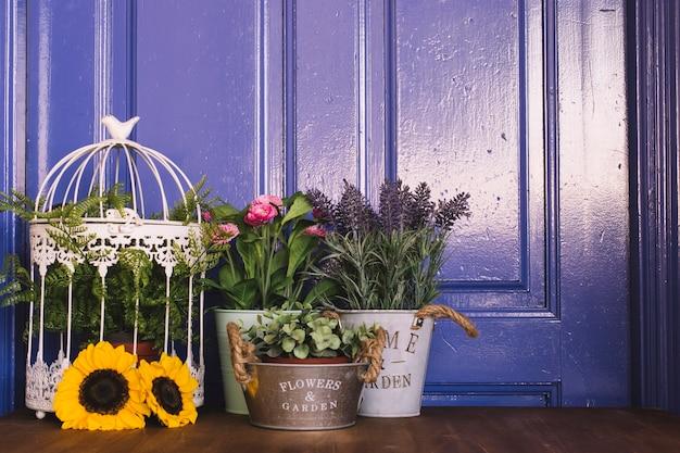 Purpurowe pojęcie ogrodnicze z roślin