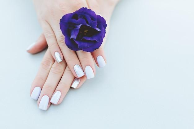 Purpurowy manicure na świetle - purpurowy tło z kwiatem