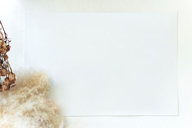 Pusta biała karta przy muhly grass