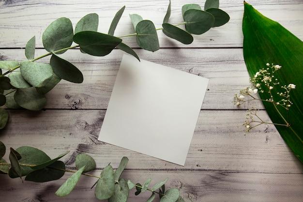 Pusta biała kartka z miejscem na tekst na jasnym tle z roślinnymi liśćmi, kwiatami i eukaliptusem