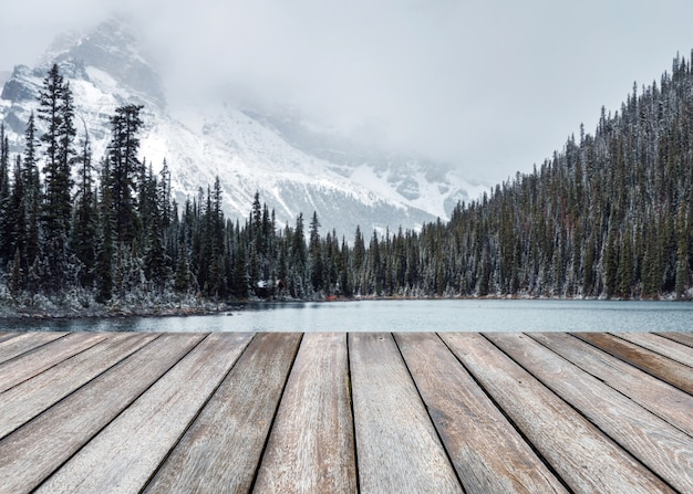 Pusta drewniana deska na niewyraźne śnieżne w sosnowym lesie z górami skalistymi w jeziorze o'hara w parku narodowym yoho