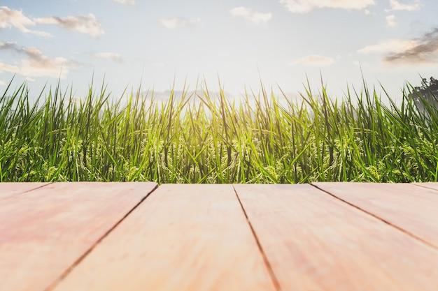 Pusta drewniana podłoga na polach ryżowych z niebieskim niebem