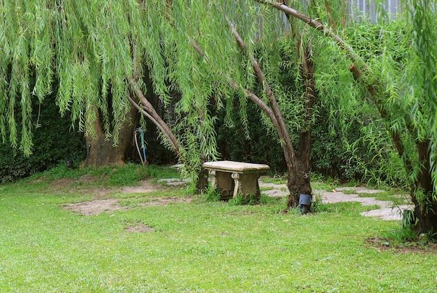 Pusta kamienna ławka w publicznym parku wśród zielonych liści