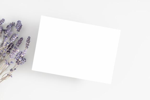 Pusta karta lub notatka z suszonymi kwiatami lawendy na białym tle