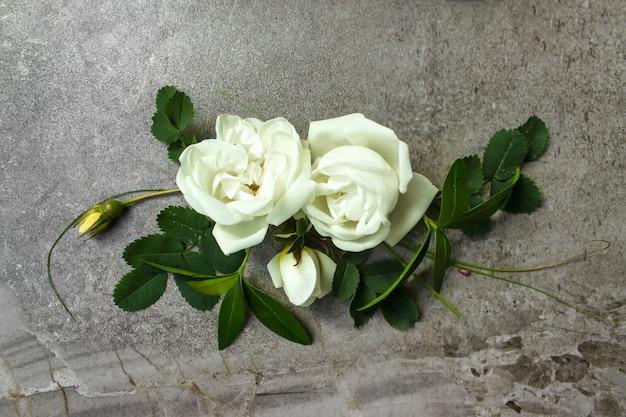 Pusta karta z wiosennym kwiatem róży na szarym tle. list miłosny z różami. puste miejsce na tekst