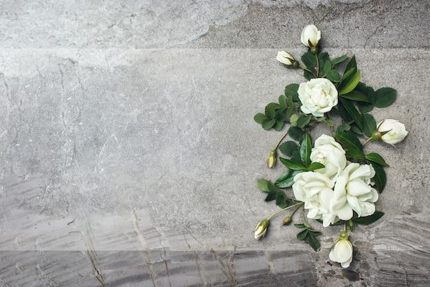 Pusta karta z wiosennym kwiatem róży na szarym tle. list miłosny z różami szablon makiety