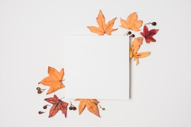 Pusta kopia przestrzeń z liści jesienią ramki