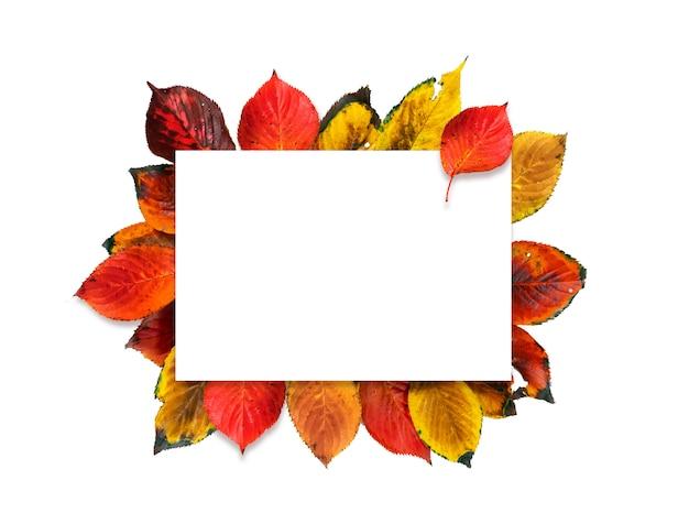Pusta przestrzeń z dekoracją kolorowych liści