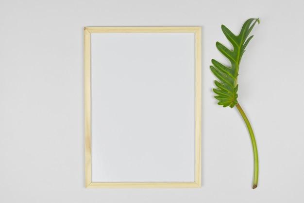 Pusta pusta ramka z zielonym liściem z boku.