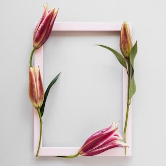 Pusta różowa ramka otoczona liliami królewskimi