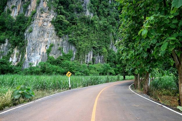Pusta wiejska droga w tropikalnym lesie z prawym drogowskazem krzywej