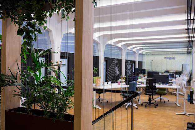 Puste biuro z roślin doniczkowych