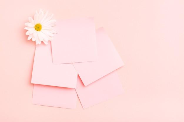 Puste kwadratowe małe kartki do pisania i chryzantema