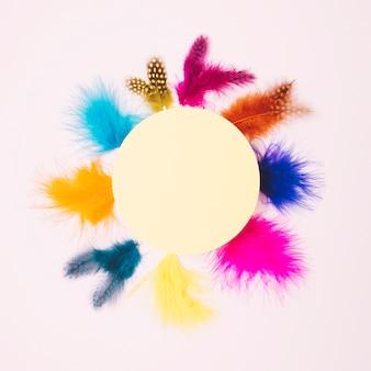 Puste okrągłe ramki beżowy otoczony kolorowe miękkie piór na różowym tle