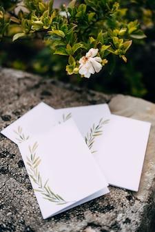 Puste pocztówki z ozdobami leżą na kamiennej płytce pod kwitnącym zielonym krzewem