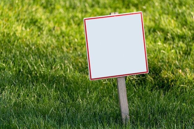 Pusty biały talerz na powierzchni trawnika. miejsce na twój tekst. skopiuj miejsce.