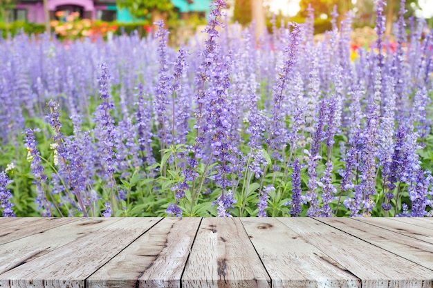 Pusty brązowy stół z drewna do wyświetlania produktu z pięknym tle kwiatów lawendy
