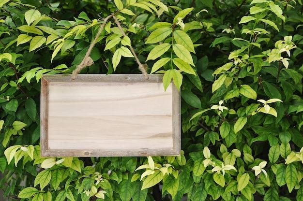 Pusty drewnianej deski znaka obwieszenie na drzewie