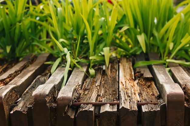 Pusty drewniany stół z ogrodowym bokeh na catering lub jedzenie z wiejskim motywem zewnętrznym, szablon makiety na wystawę produktu