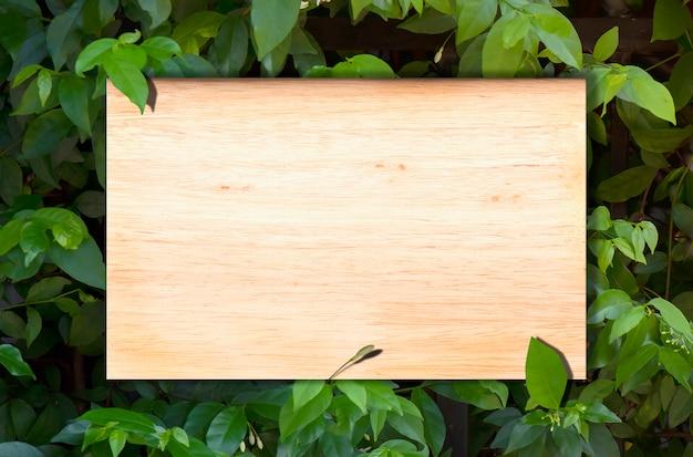 Pusty drewno na tło naturalnych liściach