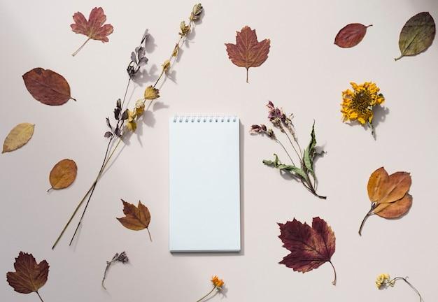 Pusty notatnik ozdobiony jesiennymi kolorowymi liśćmi suszonymi kwiatami plasterkami pomarańczy