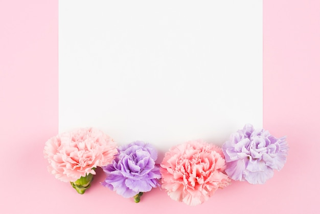 Pusty papier z uroczymi kwiatami na końcu