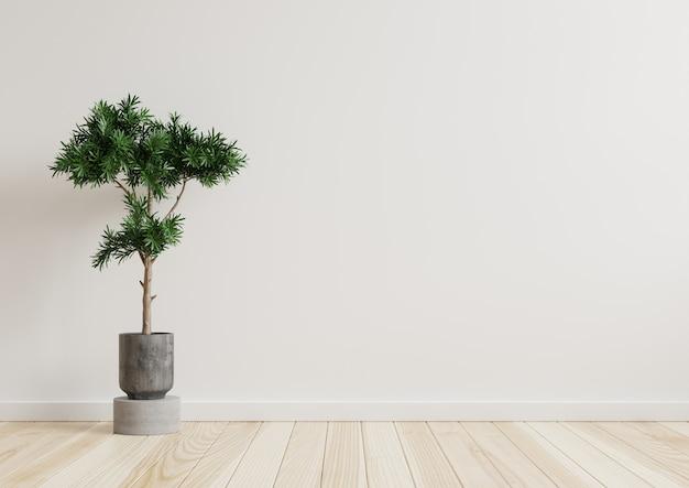 Pusty pokój biała ściana z roślinami bokiem na podłodze. renderowanie 3d.