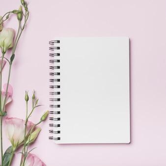 Pusty ślimakowaty notatnik z eustoma kwiatami przeciw różowemu tłu
