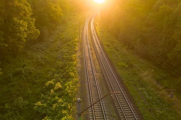 Pusty tor kolejowy w lesie o zachodzie słońca lub świcie.