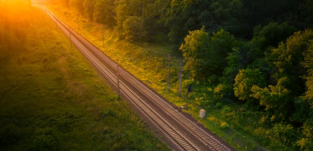 Pusty Tor Kolejowy W Lesie O Zachodzie Słońca Lub świcie. Premium Zdjęcia