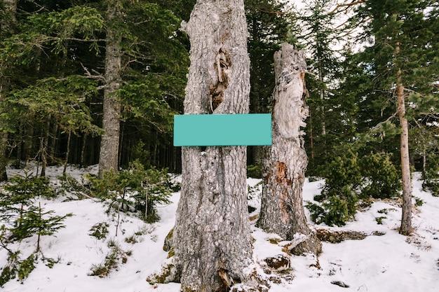 Pusty znak poziomy na drzewie w lesie iglastym w zimie