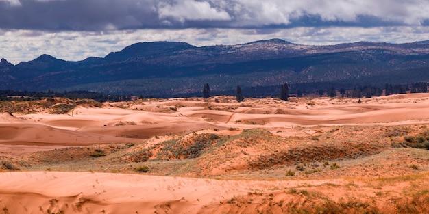 Pustynia z pasmem górskim w tle, koralowy różowy piasek diun stanu park, utah, usa
