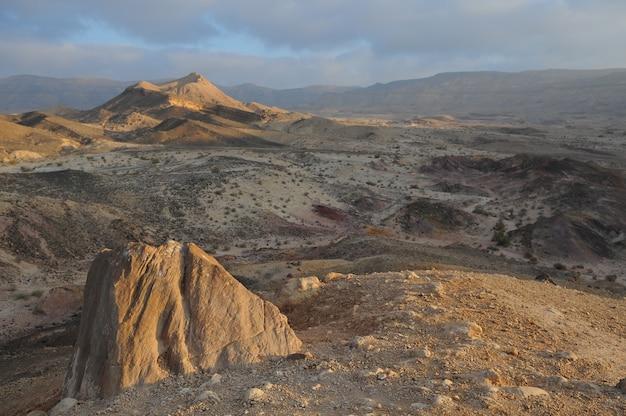 Pustynny krajobraz o wschodzie słońca