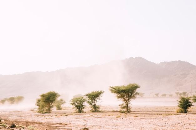 Pustynny Krajobraz Darmowe Zdjęcia
